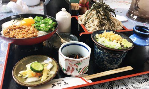 ごまそば あずみ 札幌 豊平 蕎麦 学園前 菊水 天ぷら